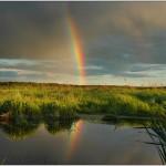 Wie entsteht ein Regenbogen – Gibt es den Topf mit Gold wirklich?