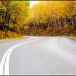 Fit im Straßenverkehr: Auto- und Augenlicht Test